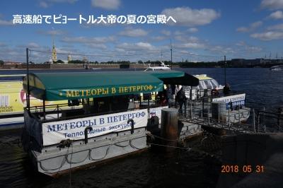 DSC05415.JPG