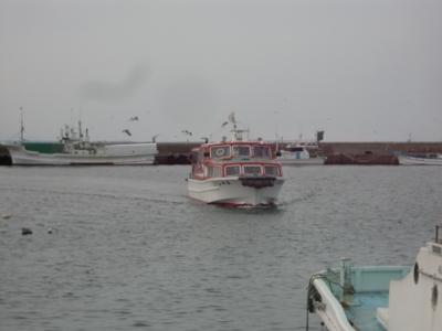 2015年4月蕪島3