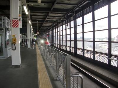 盛岡駅(秋田新幹線)