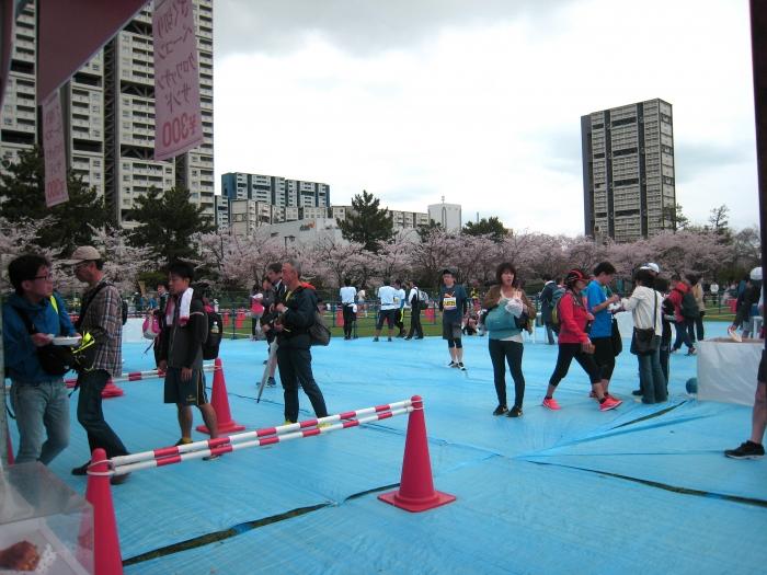 芦屋マラソンケータリング会場を囲む桜並木