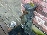 水飲み場もあるよ!