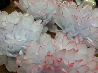 ふわふわお花