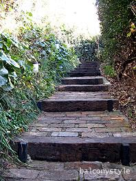 アプローチの階段
