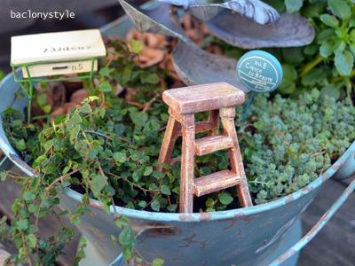 寄せ植えの鉢の中にラダー