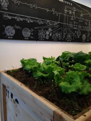 次世代農業