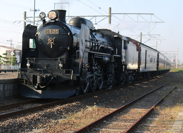 C61-20
