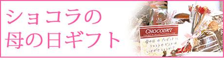 ショコラのショコラの母のご紹介(栃木県自治医大病院近くのおいしいチョコレート、ケーキ屋さん ショコラ)