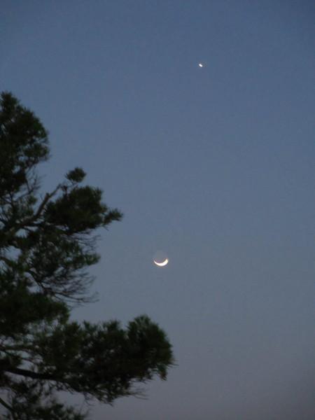 金星と三日月.JPG