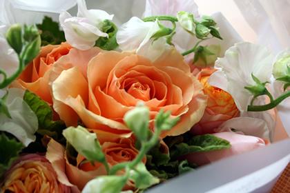 20060226_flower