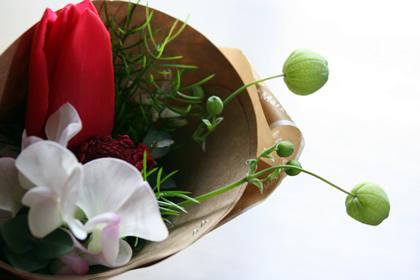 20060303_flower