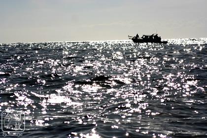 20060712_sea
