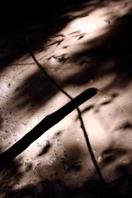 20061123_shadow3