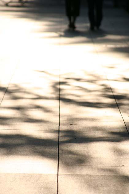 20070602_shadow
