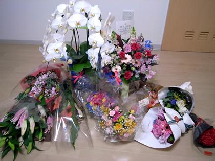 20090301_flower