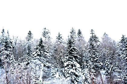 20051225_snow
