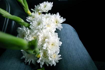 20091012_flower