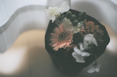 20100308_flower