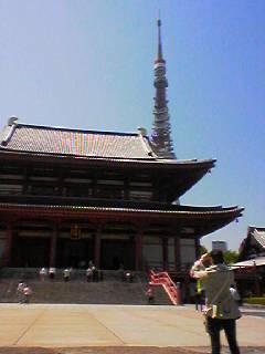 東京タワーから東の広い寺院