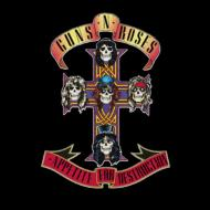 GunsNRoses Appetite for Destruction