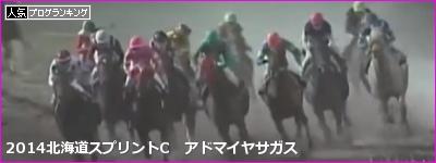北海道スプリントカップ アドマイヤサガス