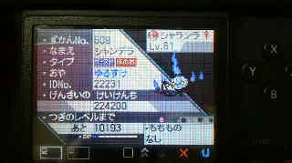 2010111021480003.jpg