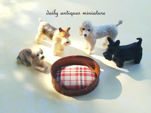 ミニチュア犬