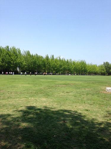 park2_5