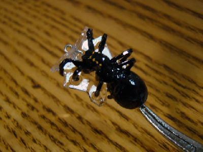 鉄砲蜘蛛でらっくす
