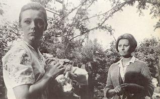 リュドミラ・サベリーエワ「ひまわり」2