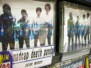 madcap death panda DEAR WORLD