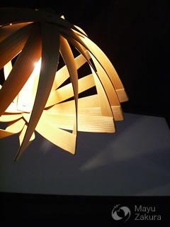 谷俊幸さんの照明
