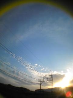 Image311.jpg