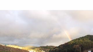今日の虹ご覧になりましたか!?