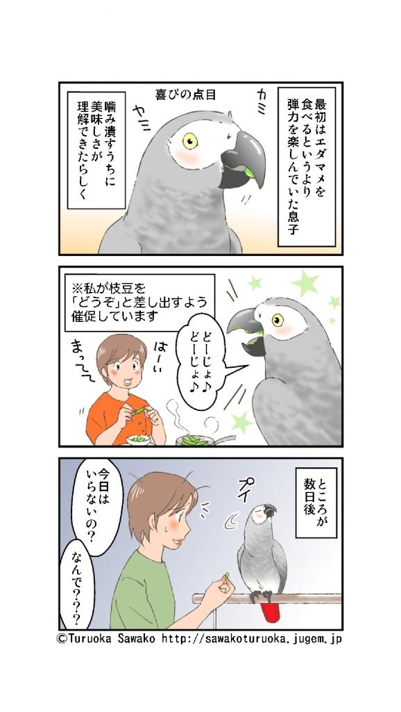 ヨウム 枝豆 エダマメ