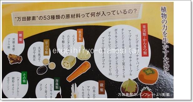園芸肥料万田アミノアルファプラスパンフレット2