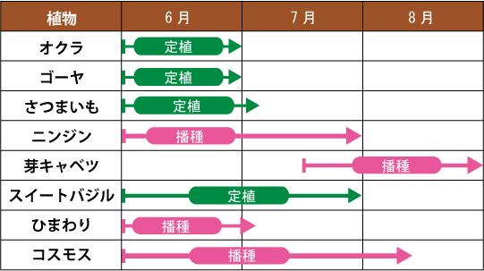 万田酵素 肥料 初夏のスケジュール