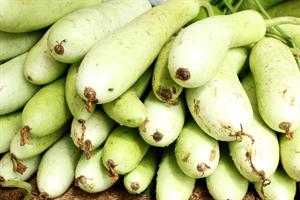 万田酵素 肥料