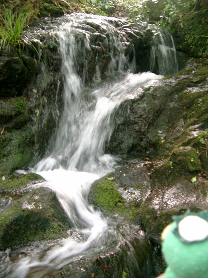 白山比?神社 琵琶滝