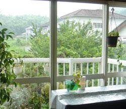 窓から見える景色はグリーンいっぱいで癒される〜
