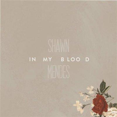Shawn Mendes - In My Blood の洋楽歌詞和訳・カタカナ情報まとめ