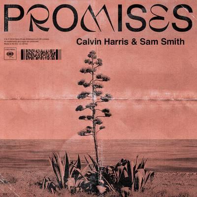 Calvin Harris, Sam Smith - Promises の洋楽歌詞和訳・カタカナ情報まとめ