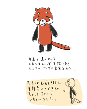 レッサーパンダ4