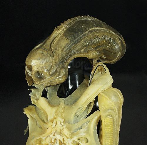 alien-prototypesuit2_1.jpg