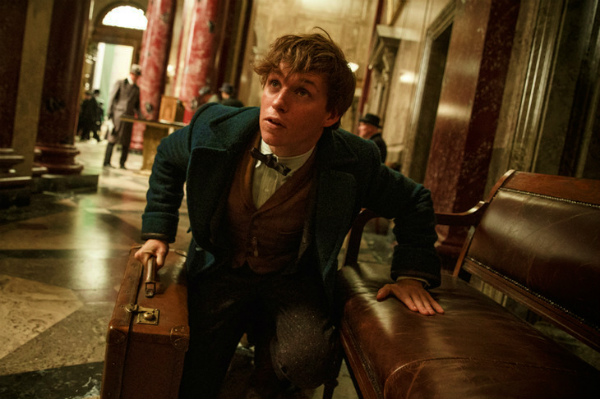 news_header_20151215_fantasticbeast01.jpg