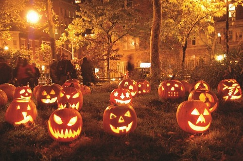 pumpkin写真1.jpg