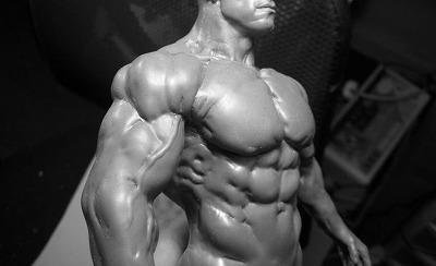 cc00c6ec44f4d721bdae4ebebcd29f0e--anatomy-sculpture.jpg