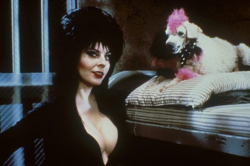ELVIRA-M-OF-THE-DARK-0038-e1488894364230.jpg