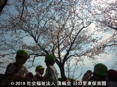 2019/04/05 桜の花見