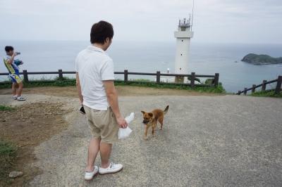 コスタビクトリア寄港石垣最北端の犬1