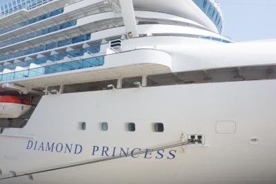 ダイヤモンドプリンセス船ロゴ